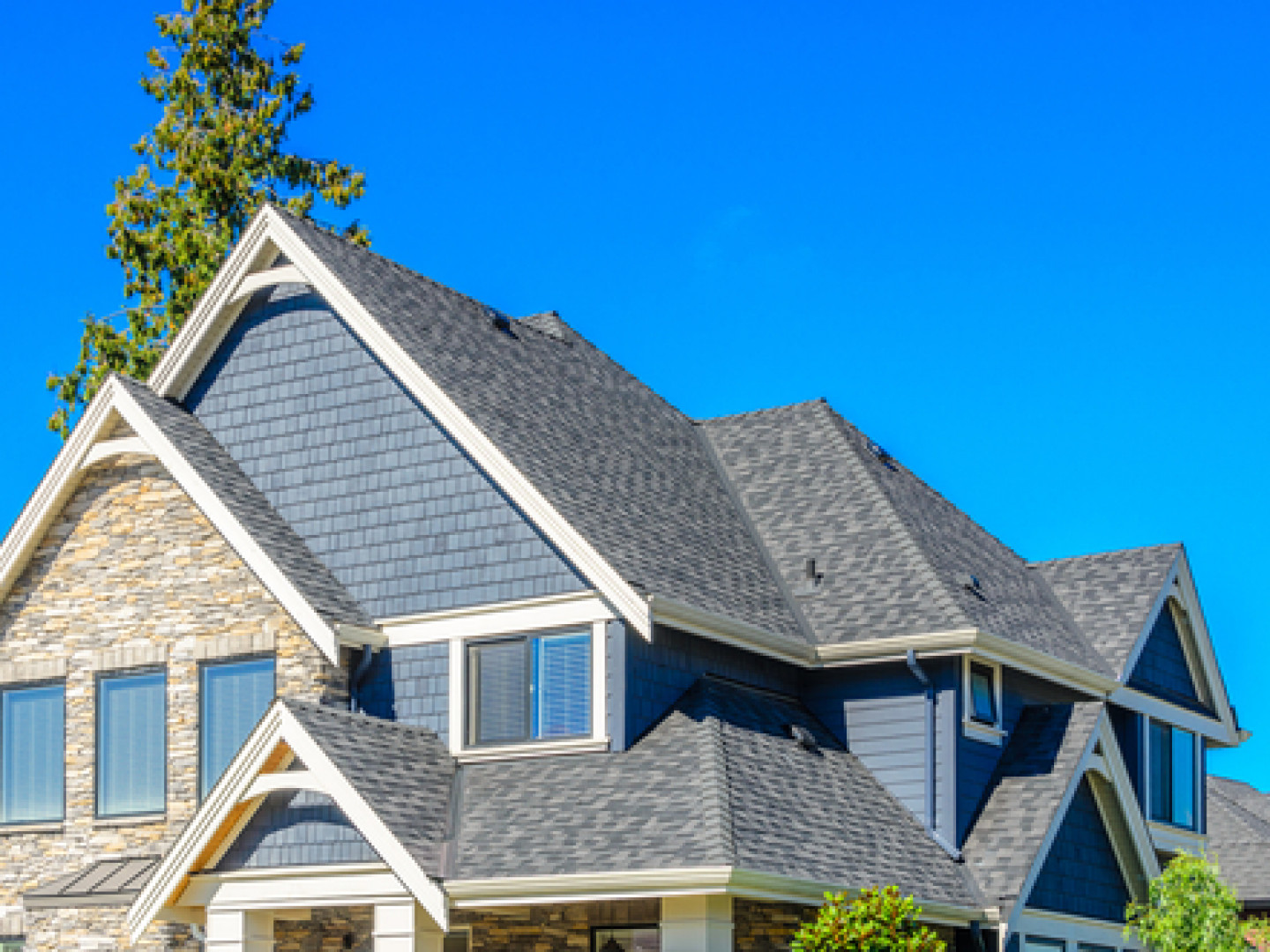 Ditch Your Damaged Roof